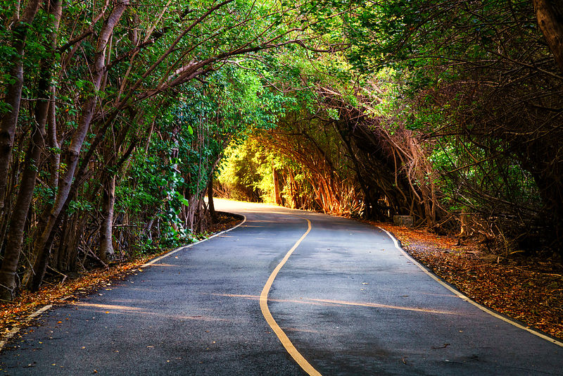 Carribean Tunnel