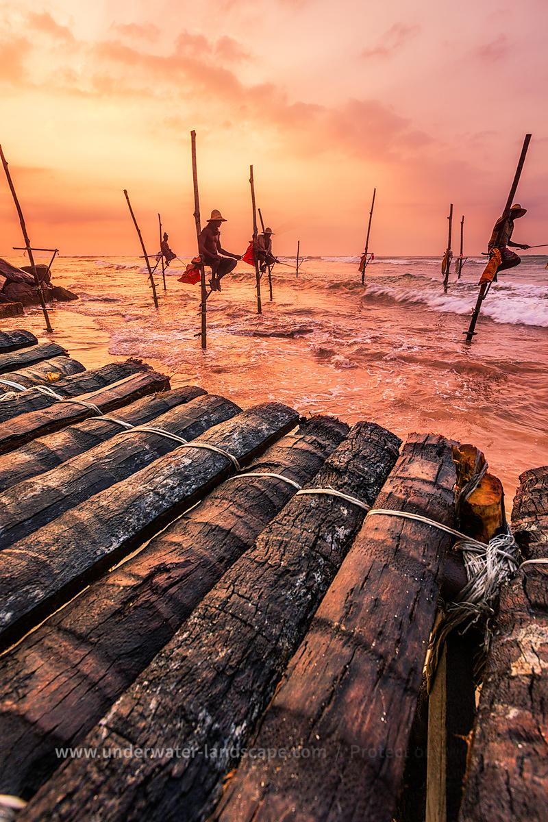 Sri Lankan Fishermen standing on wood pillars
