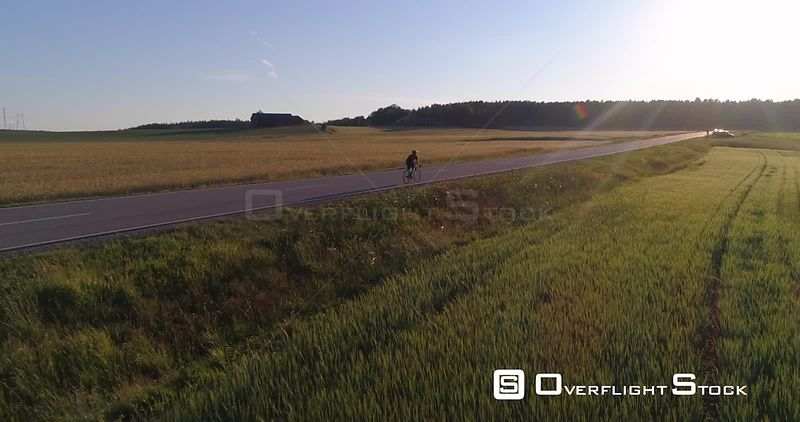 Man biking on the countryside, C4K aerial view towards a biker driving on a road, between wheat fields, on a sunny summer evening sunset, in Uusimaa, Finland