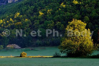 CAMPAGNE, DORDOGNE, FRANCE//COUNTRYSIDE, DORDOGNE, FRANCE