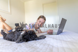 dog getting a belly rub while his owner is on a laptop