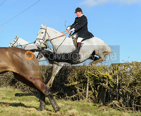Sam Bullard jumping a hedge near Knossington Spinney - The Cottesmore at Furze Hill.