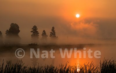 Wild_life_refuge-Montana_sunrise-RMSP_nat_wild_refuge_sunrise2017-482-August_07_2017