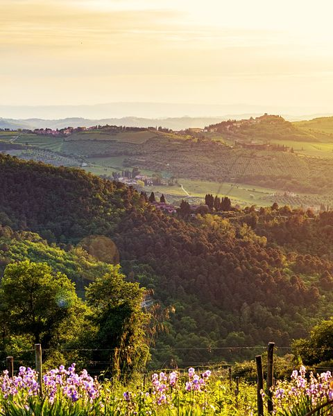 Chianti Italy Rolling Hillside at Sunset