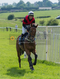 Race 7 Maiden for young horses - Meynell and South Staffs Point to Point 2014