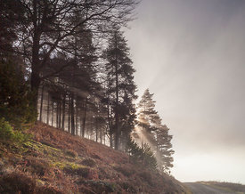 Sunbeams at Derwent reservoir