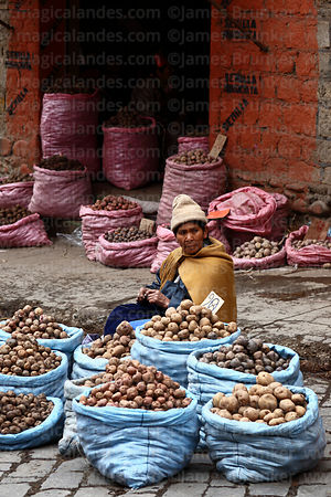 Woman selling potatoes in street market , La Paz , Bolivia