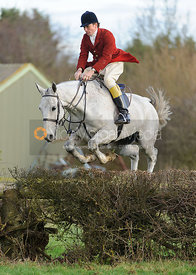 Toby Coles jumping a hedge from the meet