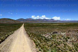 Dirt road across altiplano towards Laguna Pujzara, Cordillera de Sama Biological Reserve, Bolivia