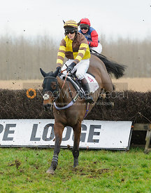BALLALOUGH (Sam Davies-Thomas)  - Midlands Area Club Point-to-point 2017, Thorpe Lodge 29/1