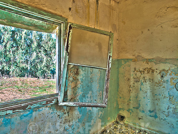 Window, looking out of a derelict building