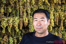 Uyghur farmer with green grapes, Xinjiang, China