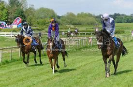 Race 5 down to the start - Meynell and South Staffs at Garthorpe, 2nd June 2013