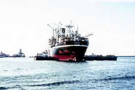 SS Manaar Loading from Barges at Colombo