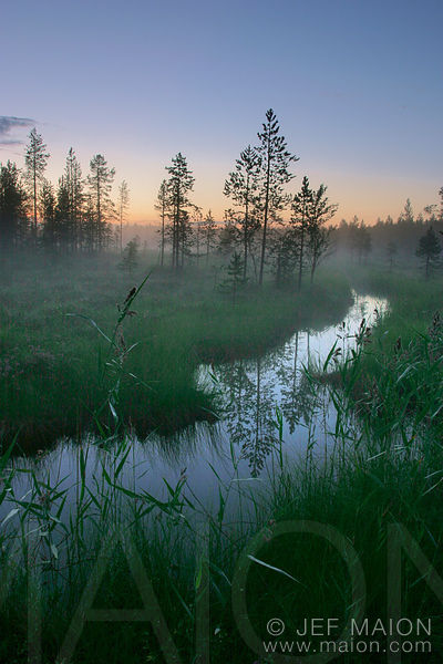 Stream and wetland under midnight sun