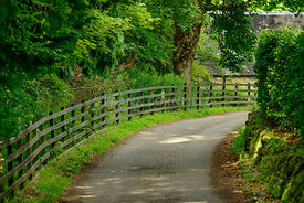 A narrow lane with a wooden fence leading to a cottage.