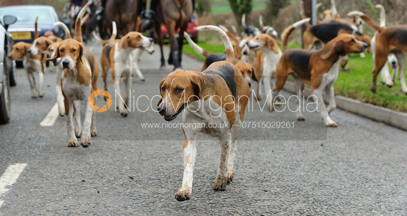 The Belvoir Hunt at Long Clawson 14/12 photos