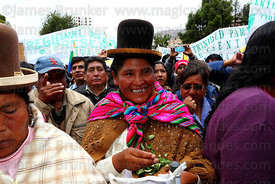 Aymara woman chewing coca leaves ( Erythroxylum coca ) at an event to celebrate Bolivia rejoining the 1961 UN Convention , La Paz , Bolivia