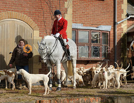 The Cottesmore foxhounds at the meet at Ladywood Lodge
