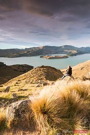 Hiker looking at view at sunrise, New Zealand