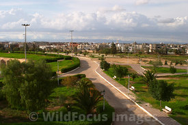 The park complex around the Aghlabid Basins. Kairouan, Tunisia; Landscape