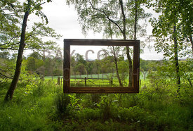 Suspended picture frame in woodland fringe