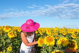 Woman in sunflowers field, Provence, France