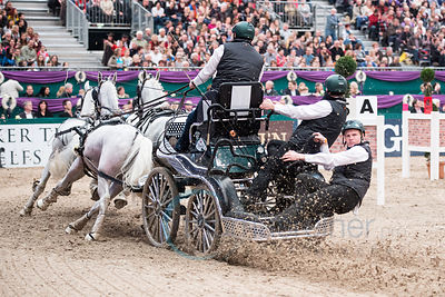 Partner Pferd Leipzig 2014 - Driving Worldcup photos