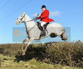 Richard Hunnisett MFH jumping a hedge near Knossington Spinney - The Cottesmore at Furze Hill.