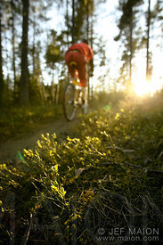 Mountain biker and sunset