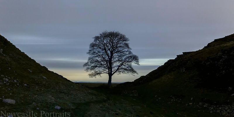 Sycamore Gap long exposure