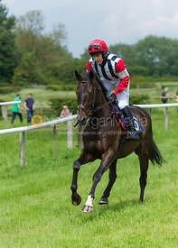 Race 3 PPORA Members - Meynell and South Staffs Point to Point 2014
