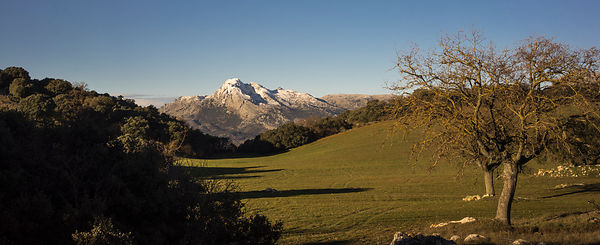 Snow-capped Chamizo at Alfarnate, Andalusia, Spain