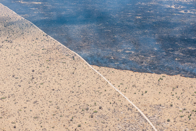 Aerial view of a bushfire in the Kalahari desert, showing a dust road acting as a fire break, such fires are normally lit by lightning in the beginning of the rainy season, Botswana, November