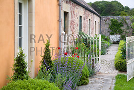 Poppies and Nepeta by gate into cottage terrace and Kitchen & Cutting Garden