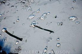 Aerial of Ice Flowing in the Susquehanna, Pennsylvania