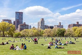 Lawn in Central Park in spring with tourists, New York city, USA