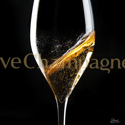 FINES BULLES DE CHAMPAGNE photos