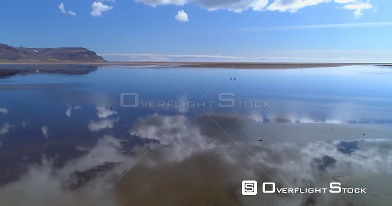 Geese Walking in Mirror Reflection Tidal Pool, Drone Aerial Raudsandur West Fjords Iceland