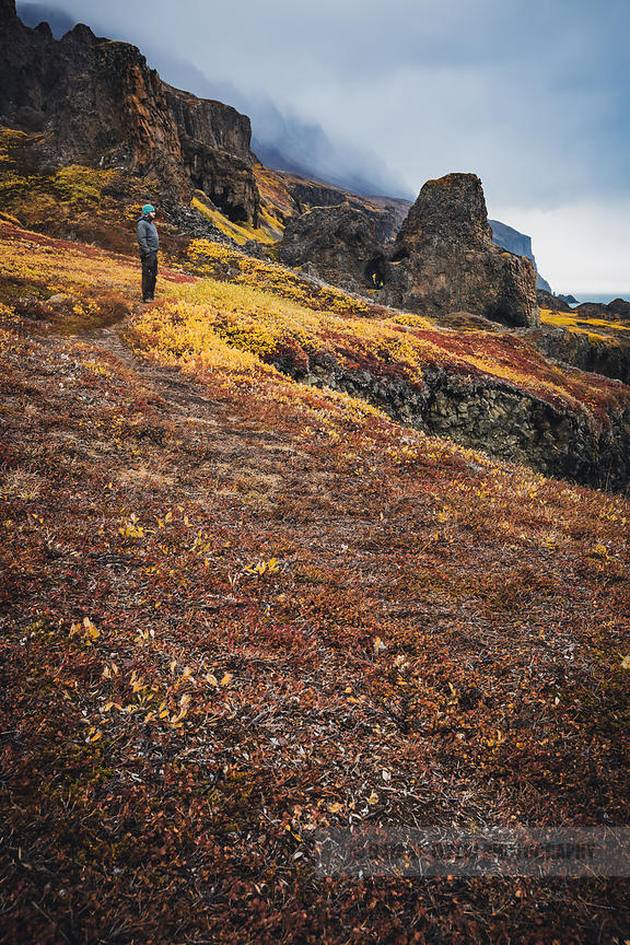 Man watching the colourful autumn landscape on the coast of Disko Island in Greenland