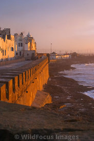 Sunset on the rampart of Essaouira, Morocco; Portrait