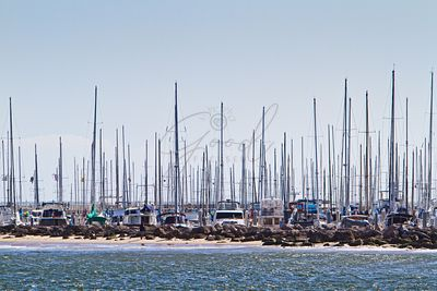 Sailboats at a marina