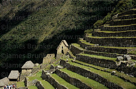 Inca terracing and houses at Machu Picchu, Peru
