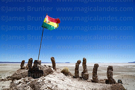 Bolivian flag and fossilised cacti on southern shore of Salar de Uyuni at Aguaquiza, Nor Lipez Province, Potosí Department, Bolivia