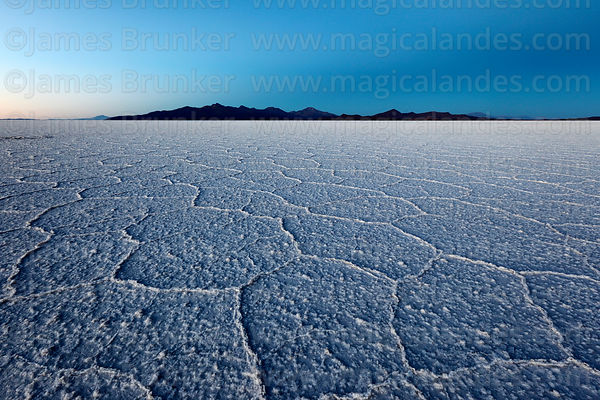 Hexagonal salt formations on surface of Salar de Uyuni before sunrise , Bolivia