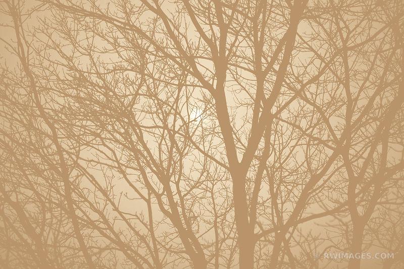 ❏ Fine Art Photography Prints | | | | | Ominous Buy Framed Prints ...