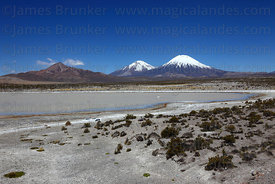 Payachatas volcanoes and shallow saline lake , Lauca National Park , Region XV , Chile