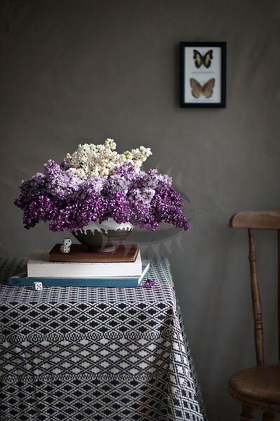 Lilac by Weber Photos