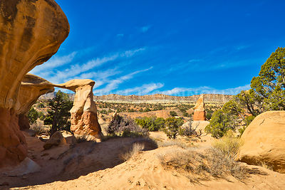 Desert Scene, Fiftymile Mountain, Devil's Garden- Grand Staircase Escalante, Utah