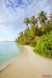 Beautiful exotic sandy beach in the Maldives